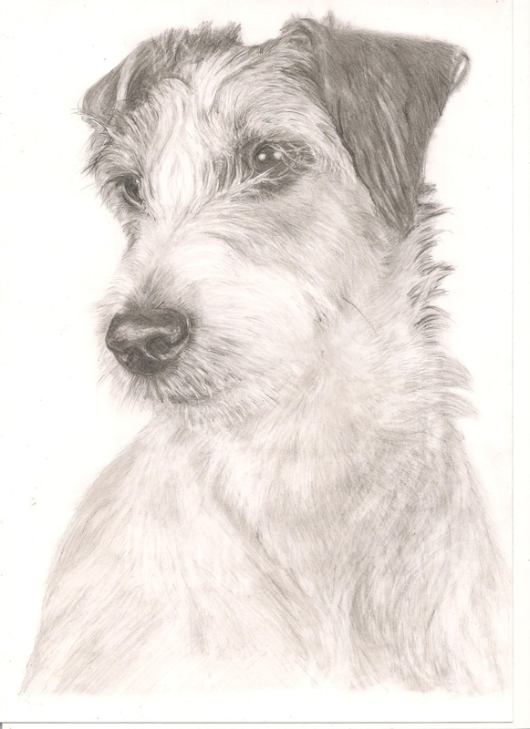 Example of Pet Portrait by Rebecca Vose
